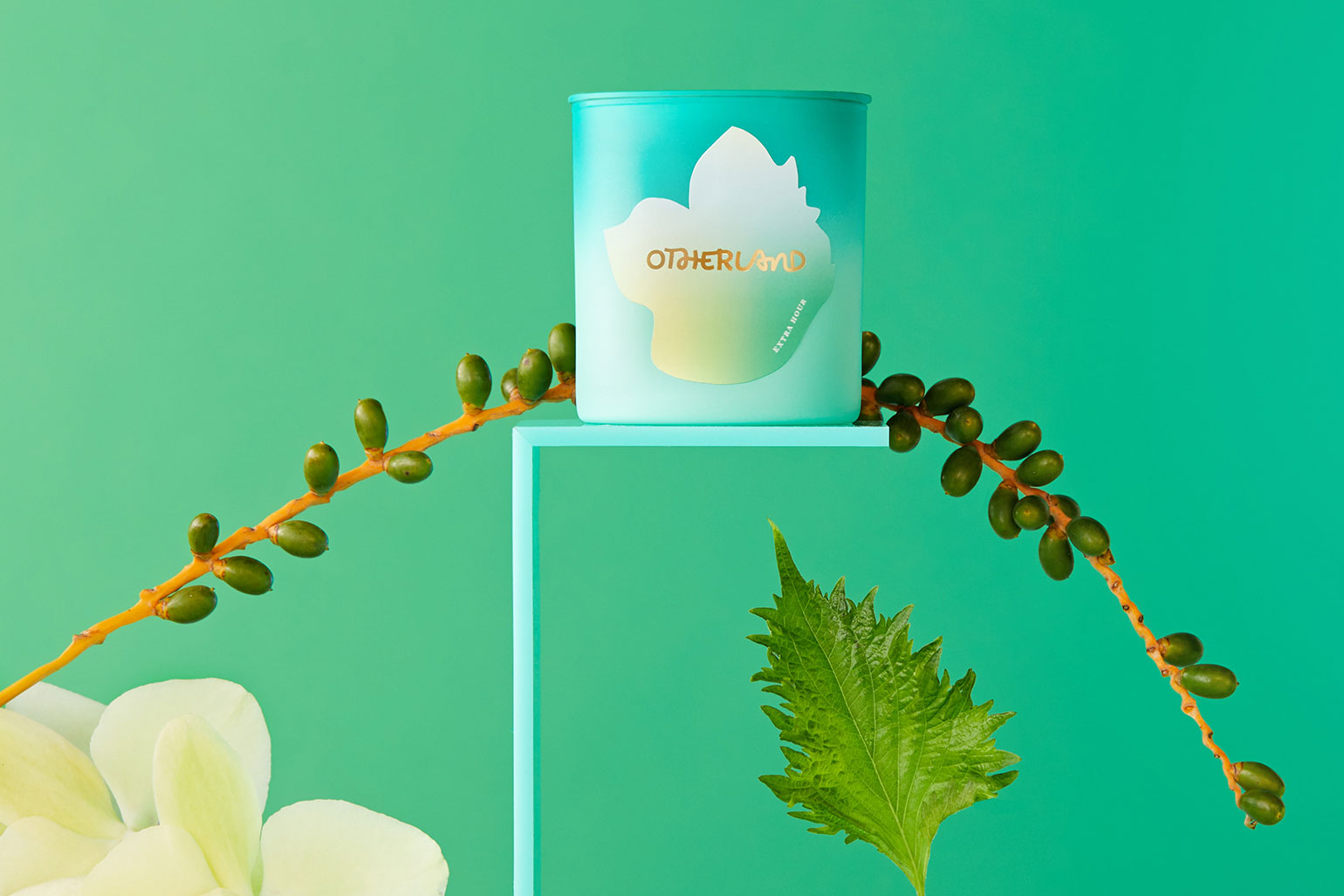 Otherland: Branding & packaging experience for a scented candle company